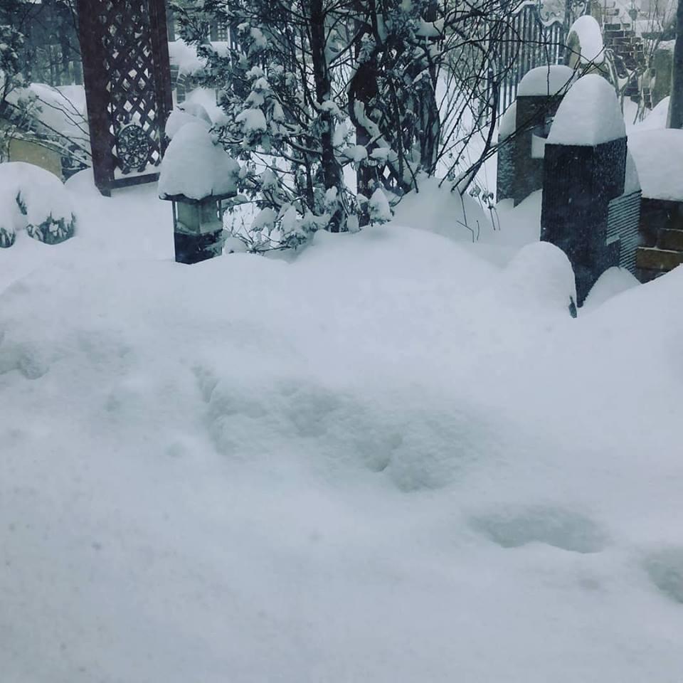 30124雪