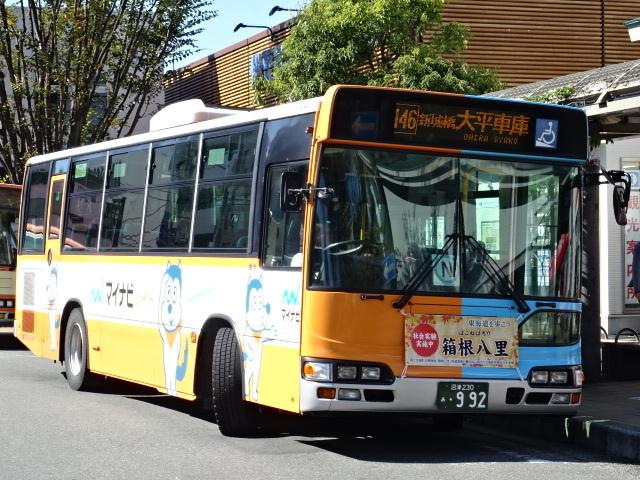 DSC08034.jpg
