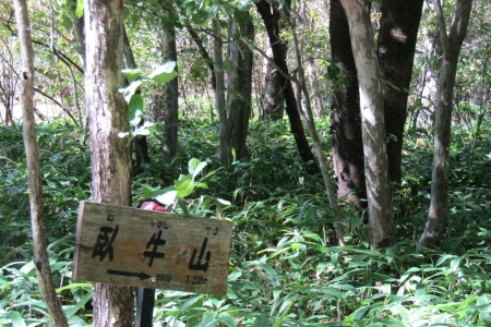 171001相馬山・臥牛山 (8)s