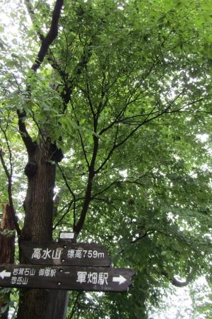 171007高水三山 (9)s