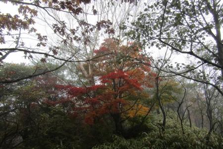 171014浅間隠山 (7)s