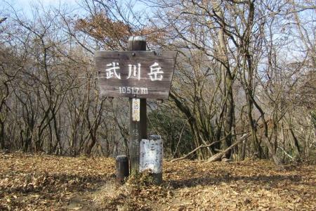171110二子山~武川岳~伊豆ヶ岳 (26)s