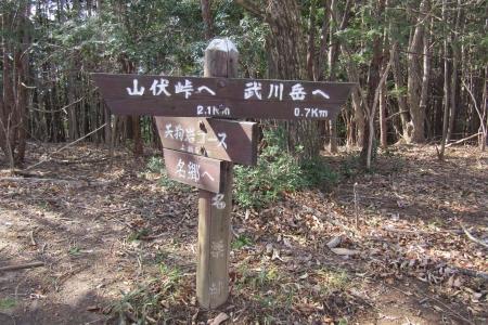 171110二子山~武川岳~伊豆ヶ岳 (28)s