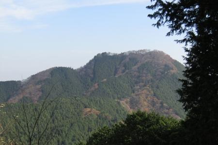 171110二子山~武川岳~伊豆ヶ岳 (31)s