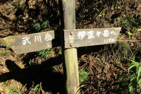 171110二子山~武川岳~伊豆ヶ岳 (33)s