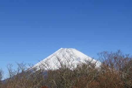 171125越前岳(愛鷹山) (20)s