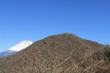 171125越前岳(愛鷹山) (26)s