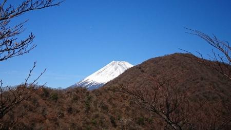 171125越前岳(愛鷹山) (34)s