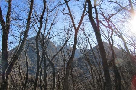 171222矢筈山~モロコシ山~子双山~鈴ヶ岳 (14)s