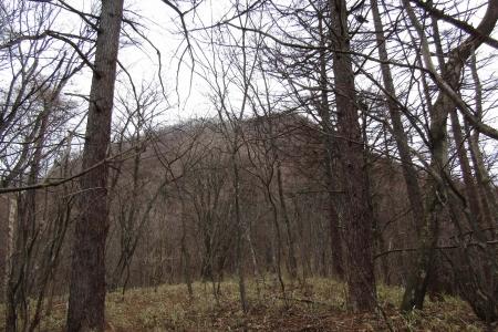 171224烏帽子ヶ岳~鬢櫛山 (22)s