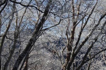 180107黒檜山~小地蔵岳 (9)s