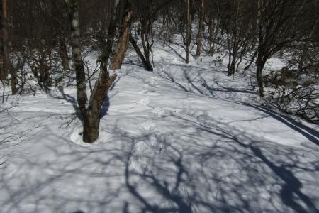 180107黒檜山~小地蔵岳 (39)s