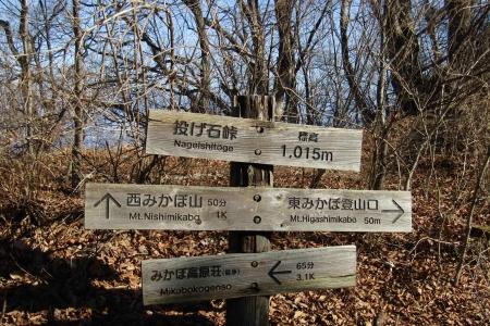 180121東御荷鉾~西御荷鉾~オドケ山 (4)s