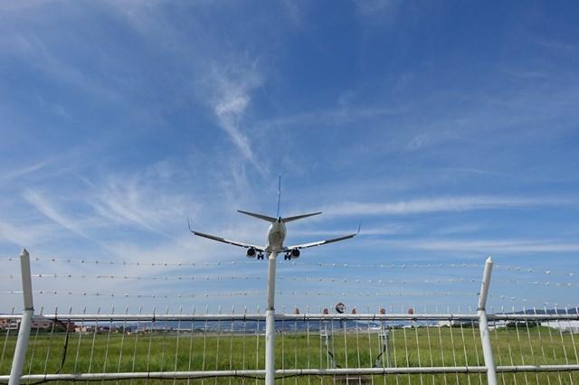 4 大阪国際空港 飛行機 (3)
