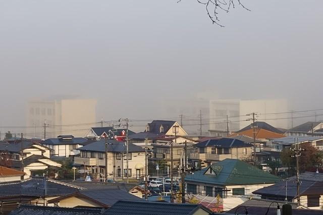 1 霧の風景 有野 (1)