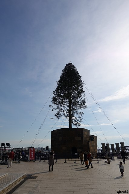 s-20171210 クリスマスツリー・メリケンパーク (8)