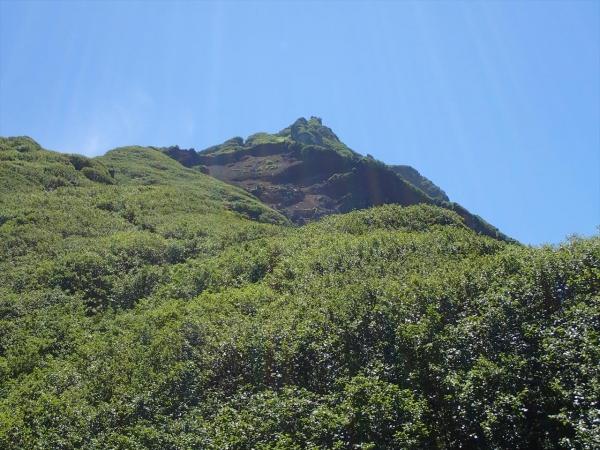 山頂を見る