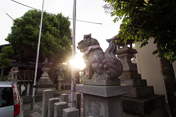 鈴宮社獅子と夕陽