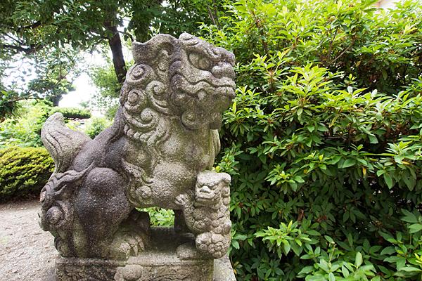 皇太神社狛犬