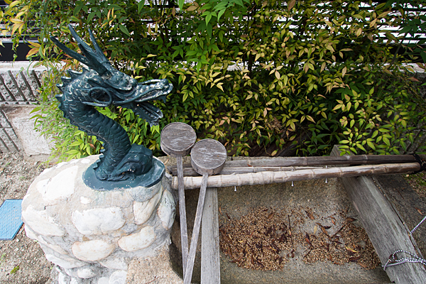 横井秋葉神社手水舎の龍