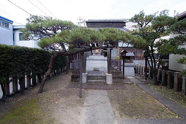 玉船町金山神社境内の松と社