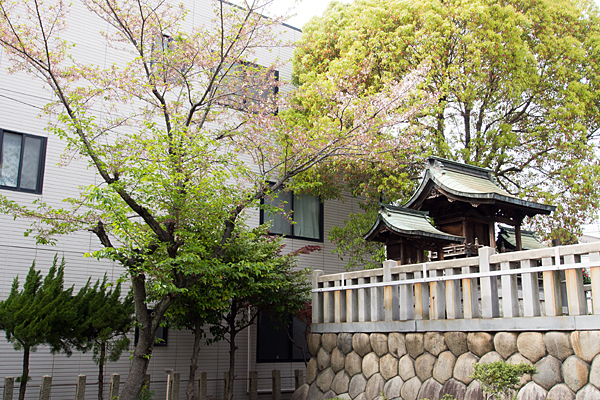 千年八幡神社本殿