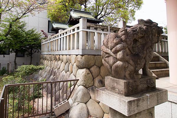 千年八幡神社狛犬
