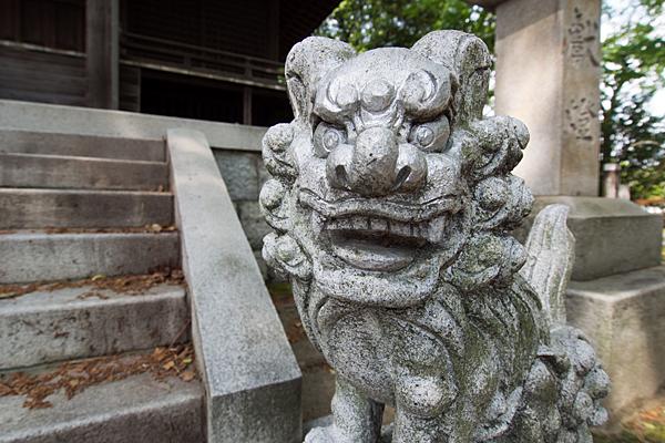 國玉神社拝殿前の狛犬