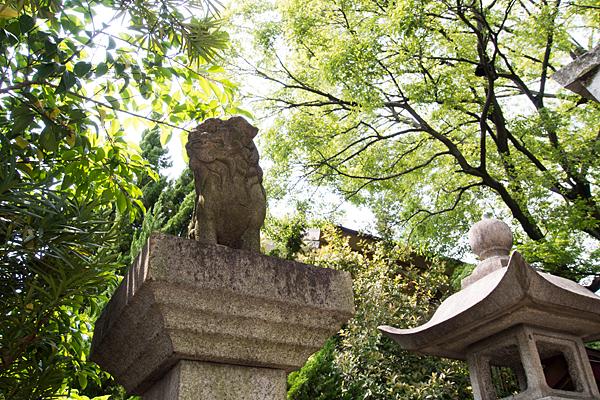 伏屋七所社狛犬