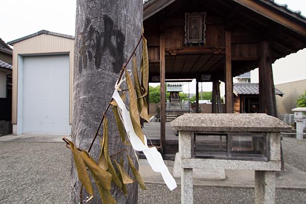 太神社枯れた榊