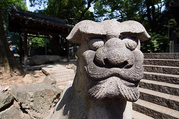 大須白山神社狛犬