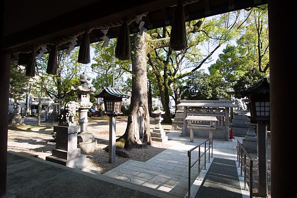金城六所神社境内の風景
