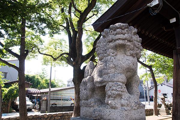 中野新町神明社狛犬