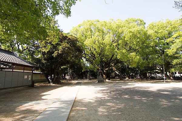 篠原八幡社境内の風景