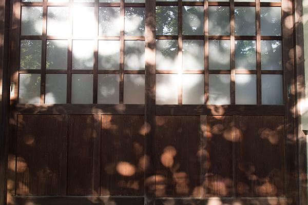 小本神明社木漏れ日の風景
