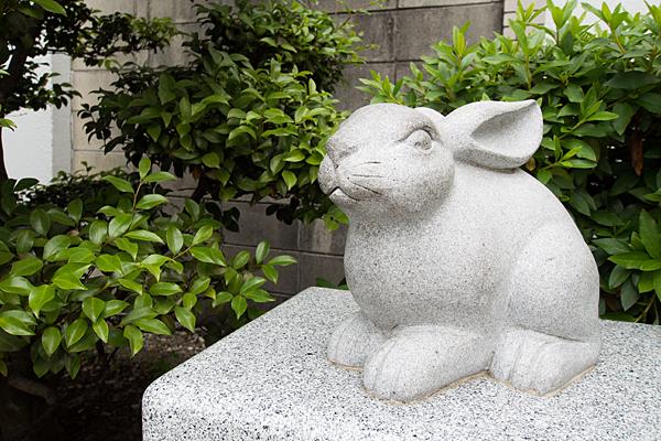 少彦名神社ウサギ