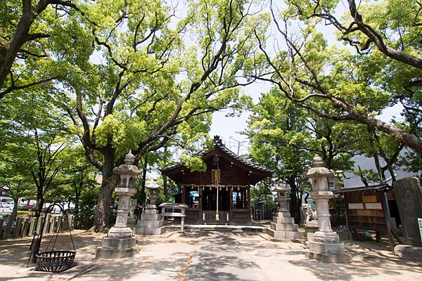 須佐之男社境内と拝殿