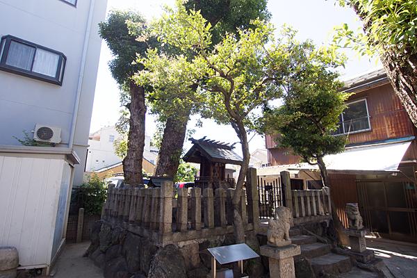 横田神社全景