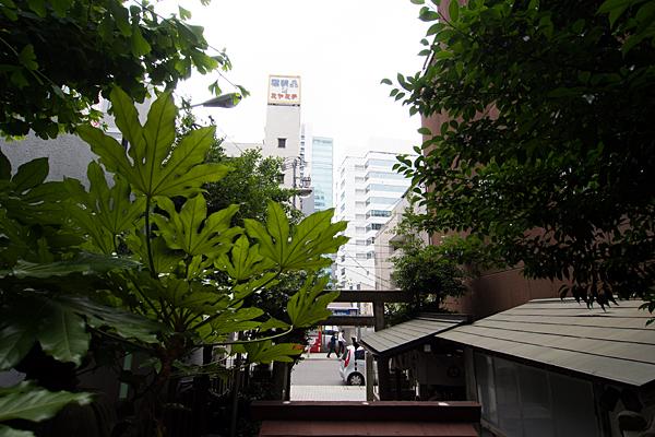 柳里神社境内から見る風景