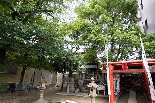 柳島神社境内全景