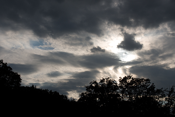 小幡緑地の夕景