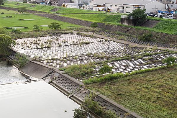 矢田川の河川敷
