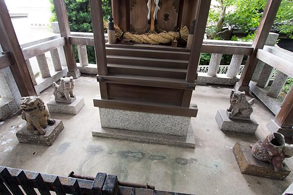 野田三狐神社本殿周りの狛犬