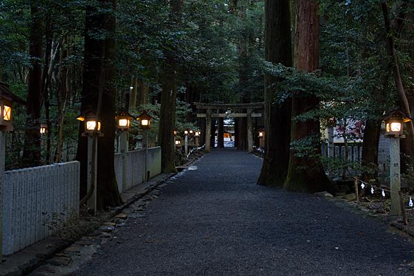 椿大神社夕暮れの参道