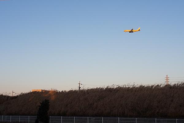 飛行機のいる空9