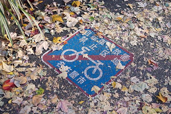 踏み荒らされた落ち葉