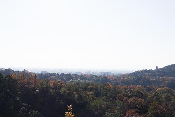 寂光院展望台からの眺め
