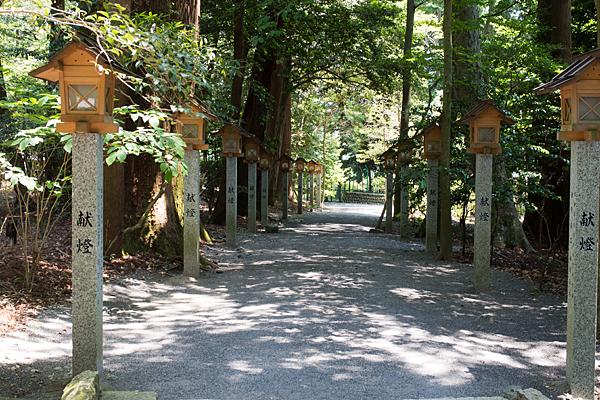 椿大神社参道と灯籠