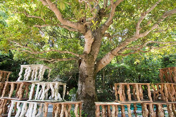 椿大神社木と作品