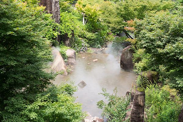 モリコロ日本庭園の池とミスト